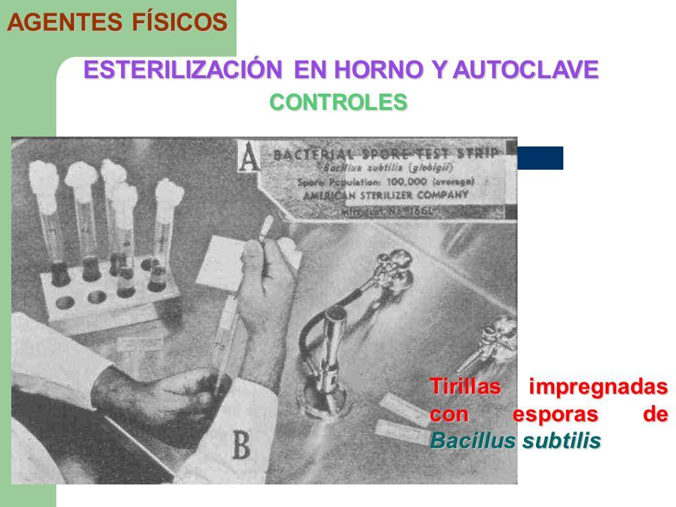 CONTROLES ESTERILIZACIÓN EN HORNO Y AUTOCLAVE AGENTES FÍSICOS Tirillas impregnadas con esporas de Bacillus subtilis