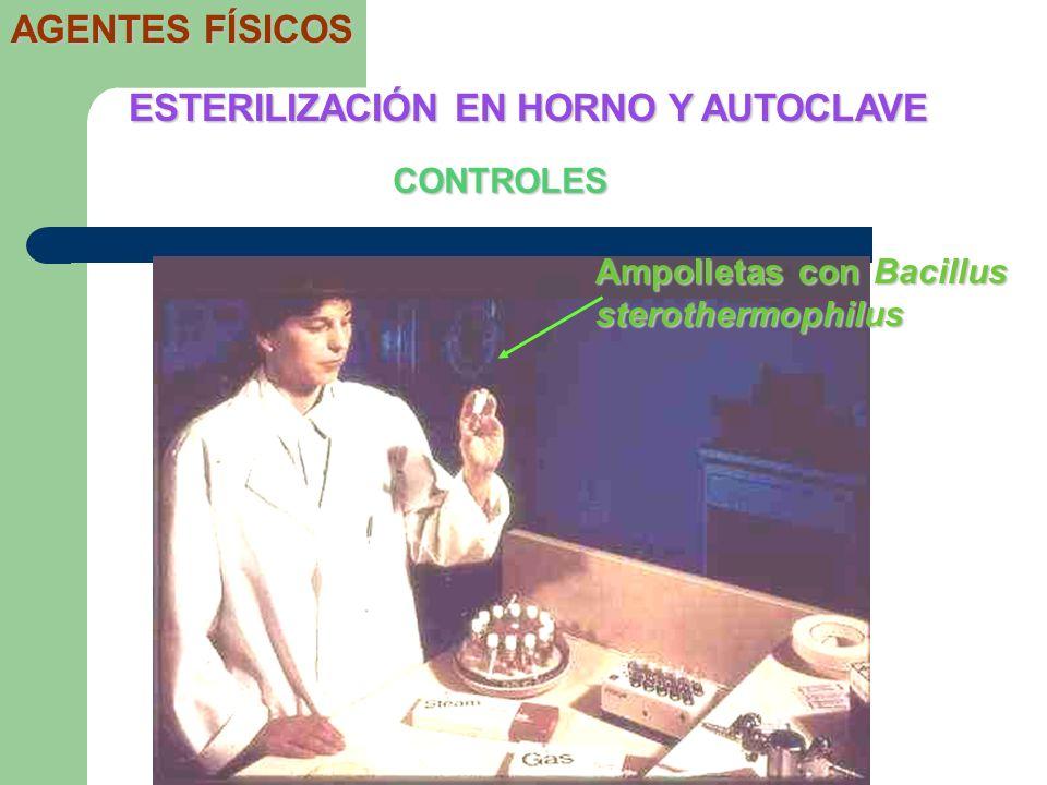 CONTROLES ESTERILIZACIÓN EN HORNO Y AUTOCLAVE AGENTES FÍSICOS Ampolletas con Bacillus sterothermophilus