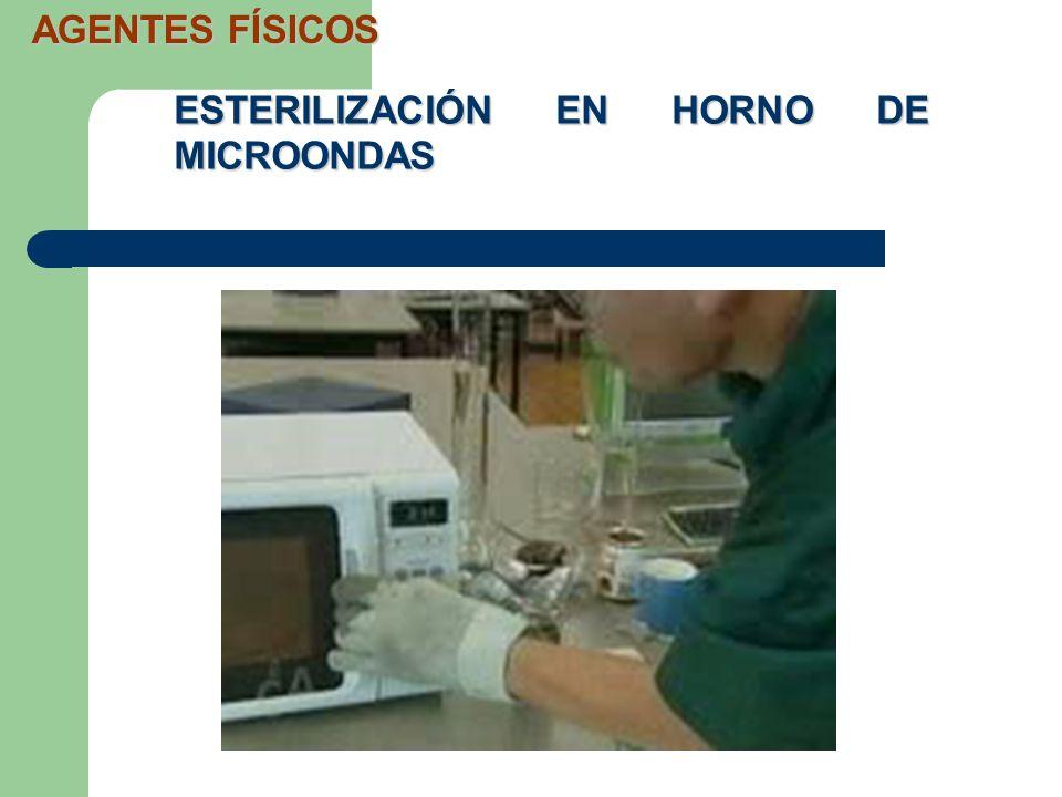 ESTERILIZACIÓN EN HORNO DE MICROONDAS AGENTES FÍSICOS
