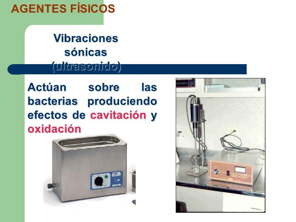 Vibraciones sónicas (ultrasonido) AGENTES FÍSICOS Actúan sobre las bacterias produciendo efectos de cavitación y oxidación