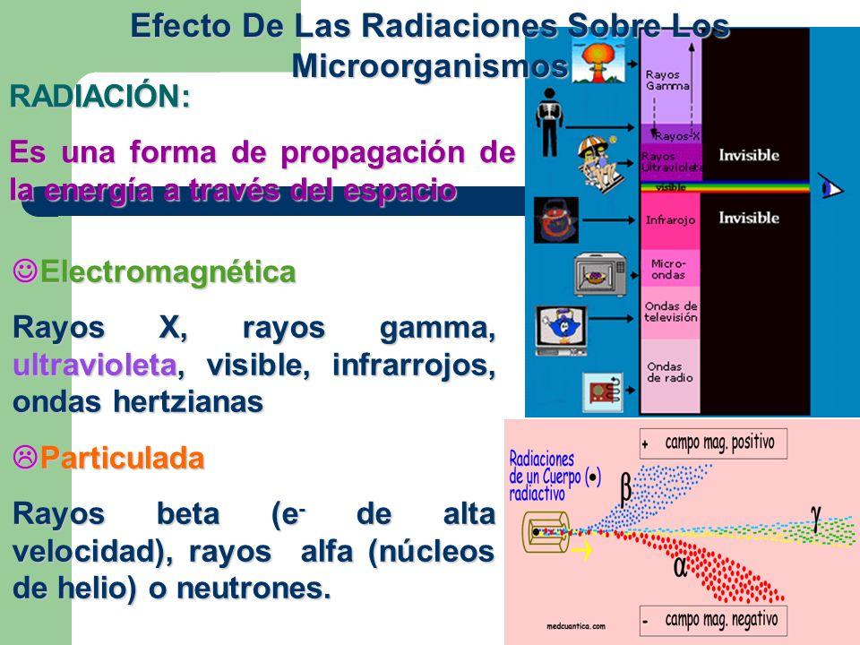 Efecto De Las Radiaciones Sobre Los Microorganismos Electromagnética Electromagnética Rayos X, rayos gamma, ultravioleta, visible, infrarrojos, ondas