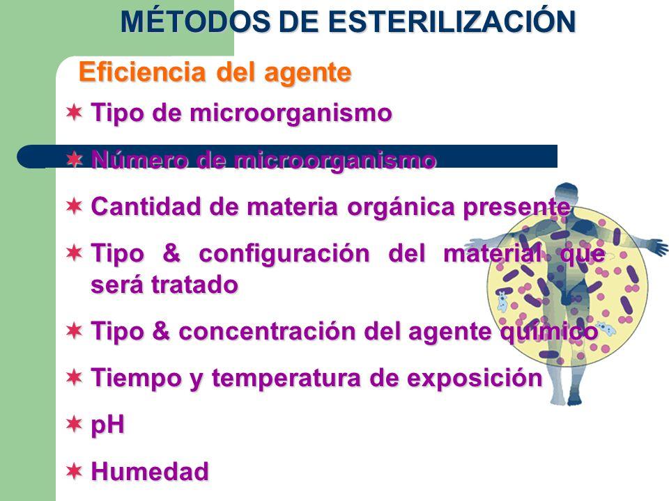 Tipo de microorganismo Tipo de microorganismo Número de microorganismo Número de microorganismo Cantidad de materia orgánica presente Cantidad de mate