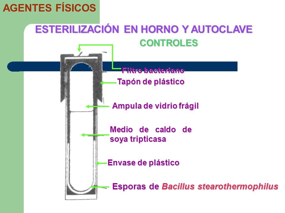 CONTROLES ESTERILIZACIÓN EN HORNO Y AUTOCLAVE AGENTES FÍSICOS Filtro bacteriano Tapón de plástico Ampula de vidrio frágil Medio de caldo de soya tript