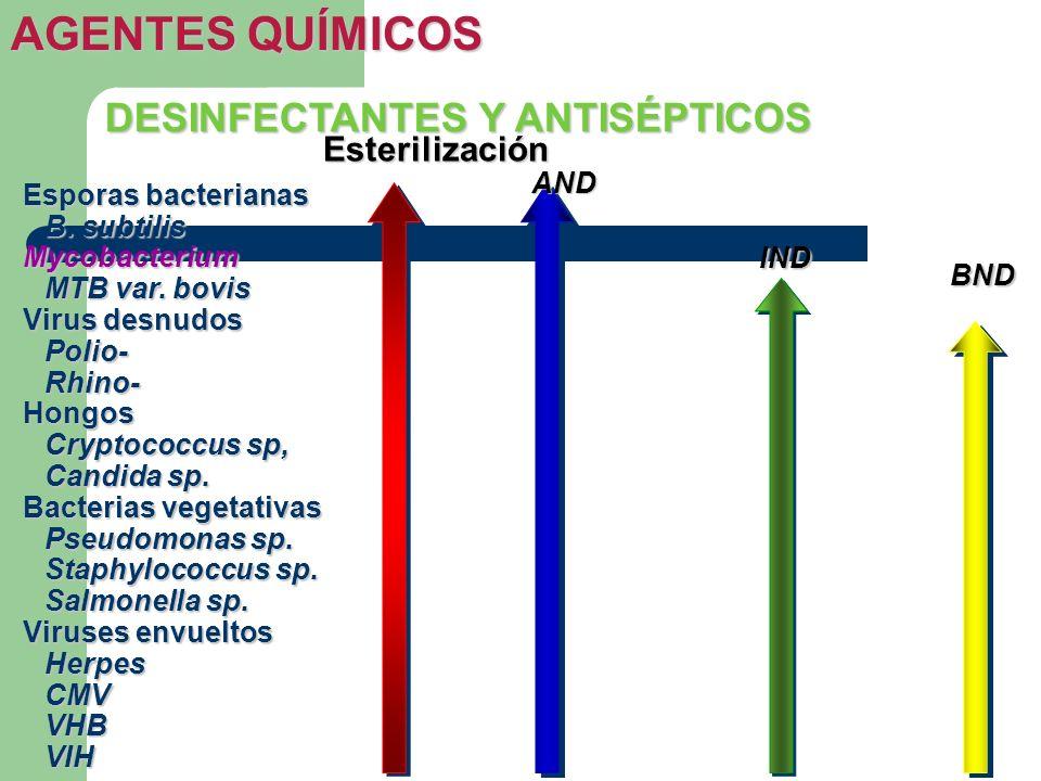 DESINFECTANTES Y ANTISÉPTICOS AGENTES QUÍMICOS Esporas bacterianas B. subtilis Mycobacterium MTB var. bovis Virus desnudos Polio-Rhino-Hongos Cryptoco