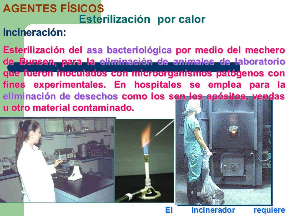 Esterilización por calor Incineración: Esterilización del asa bacteriológica por medio del mechero de Bunsen, para la eliminación de animales de labor