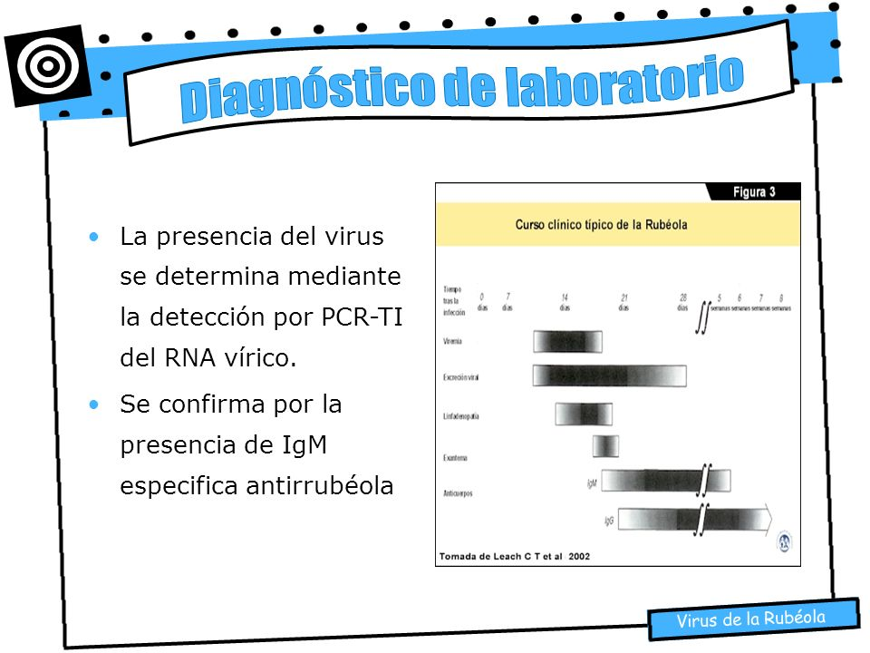 Virus de la Rubéola La presencia del virus se determina mediante la detección por PCR-TI del RNA vírico. Se confirma por la presencia de IgM especific