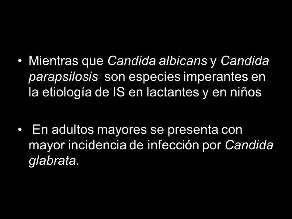 Mientras que Candida albicans y Candida parapsilosis son especies imperantes en la etiología de IS en lactantes y en niños En adultos mayores se presenta con mayor incidencia de infección por Candida glabrata.