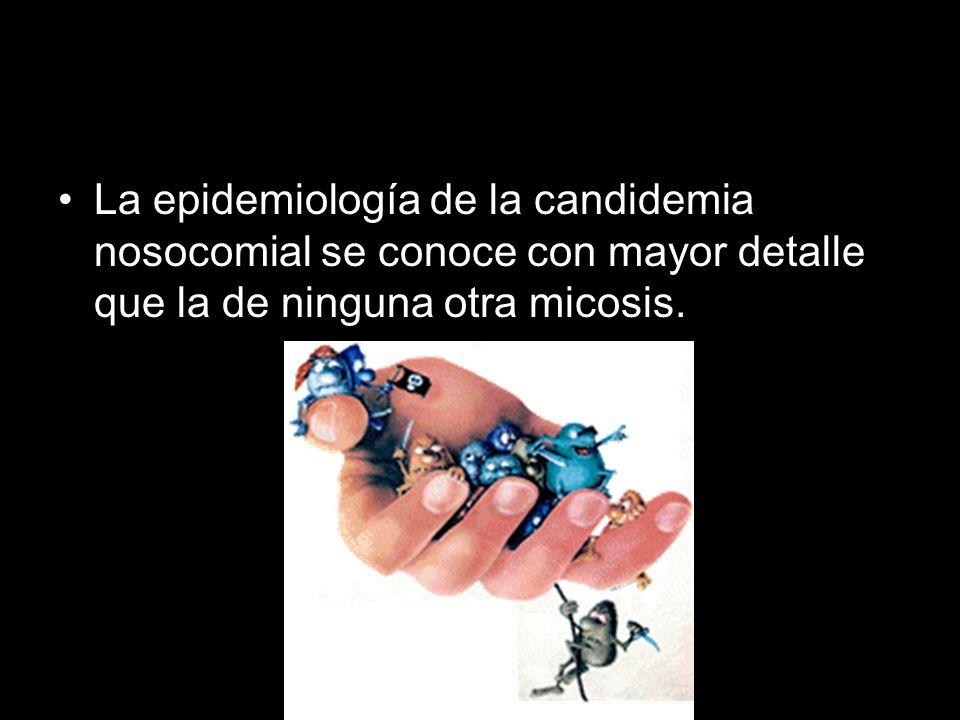 La epidemiología de la candidemia nosocomial se conoce con mayor detalle que la de ninguna otra micosis.