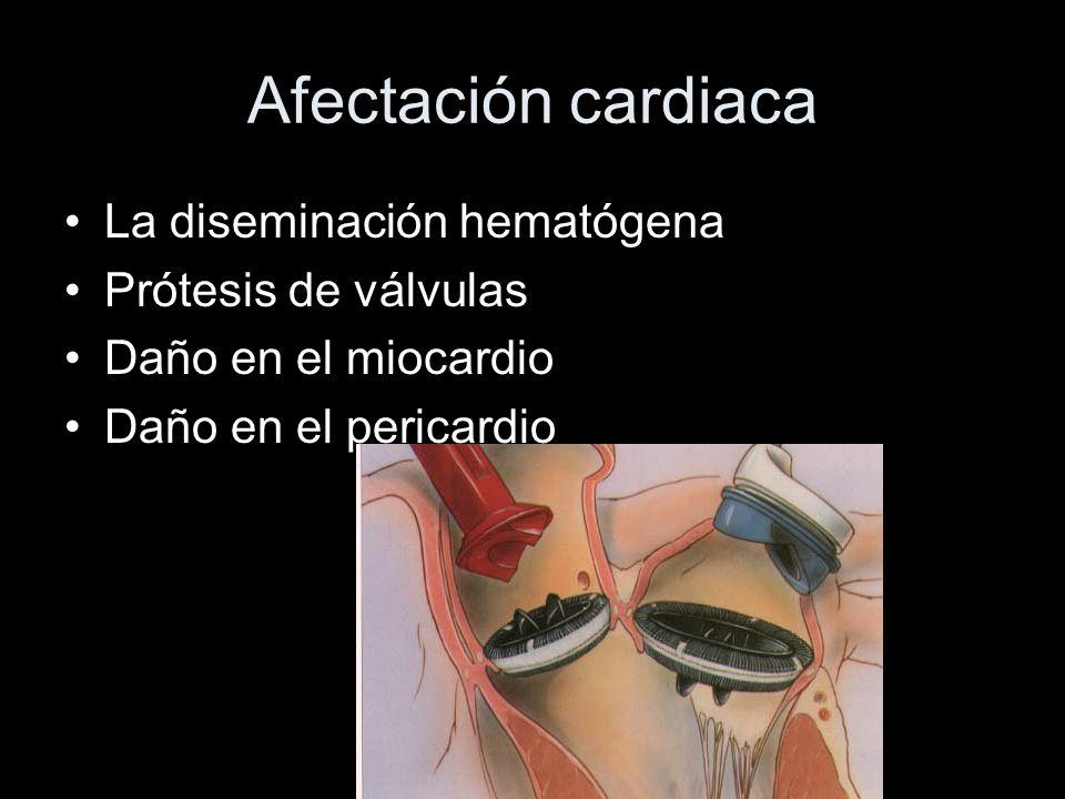 Afectación cardiaca La diseminación hematógena Prótesis de válvulas Daño en el miocardio Daño en el pericardio