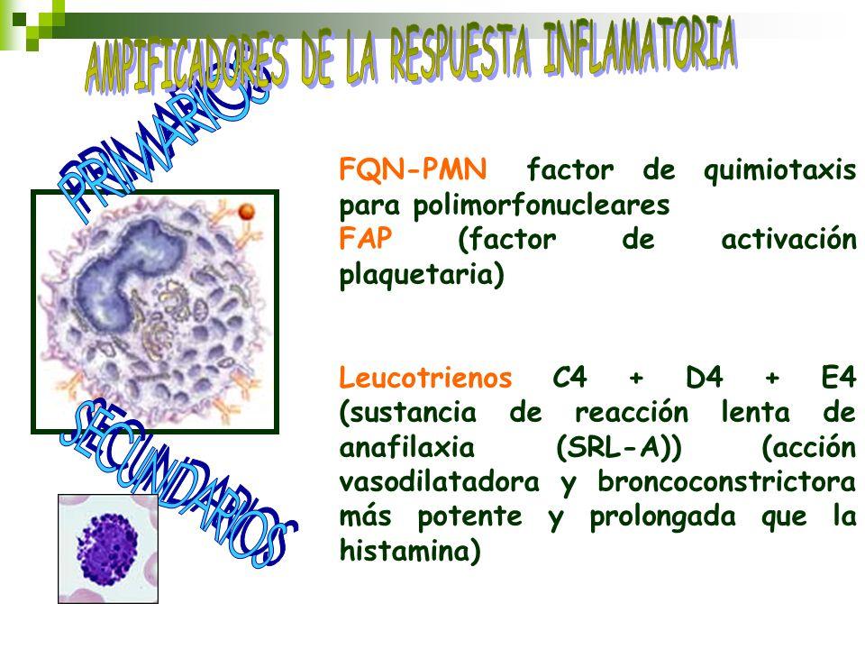 FQN-PMN (factor de quimiotaxis para polimorfonucleares) FAP (factor de activación plaquetaria) Leucotrienos C4 + D4 + E4 (sustancia de reacción lenta