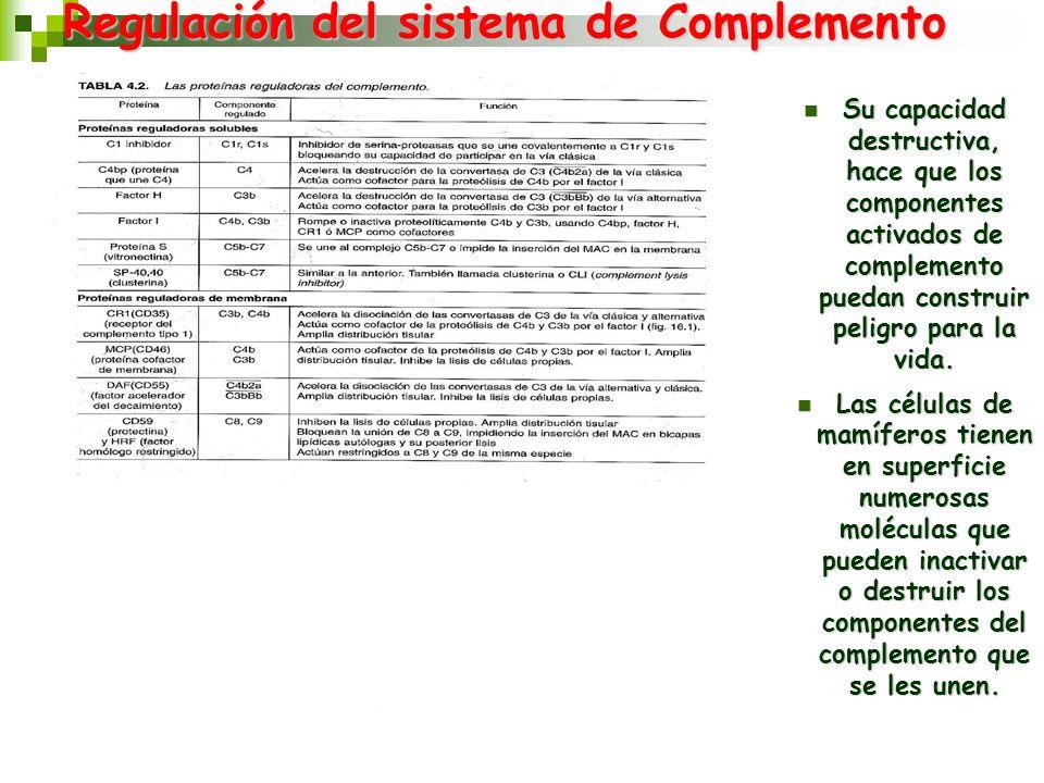 Regulación del sistema de Complemento Su capacidad destructiva, hace que los componentes activados de complemento puedan construir peligro para la vid