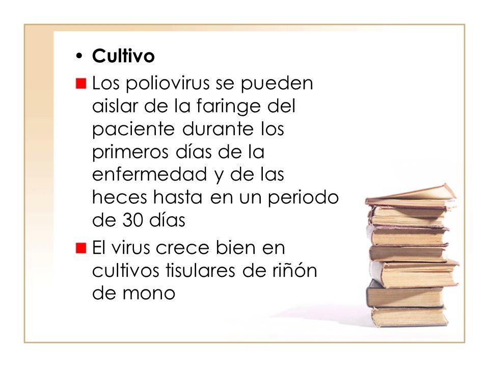 Cultivo Los poliovirus se pueden aislar de la faringe del paciente durante los primeros días de la enfermedad y de las heces hasta en un periodo de 30