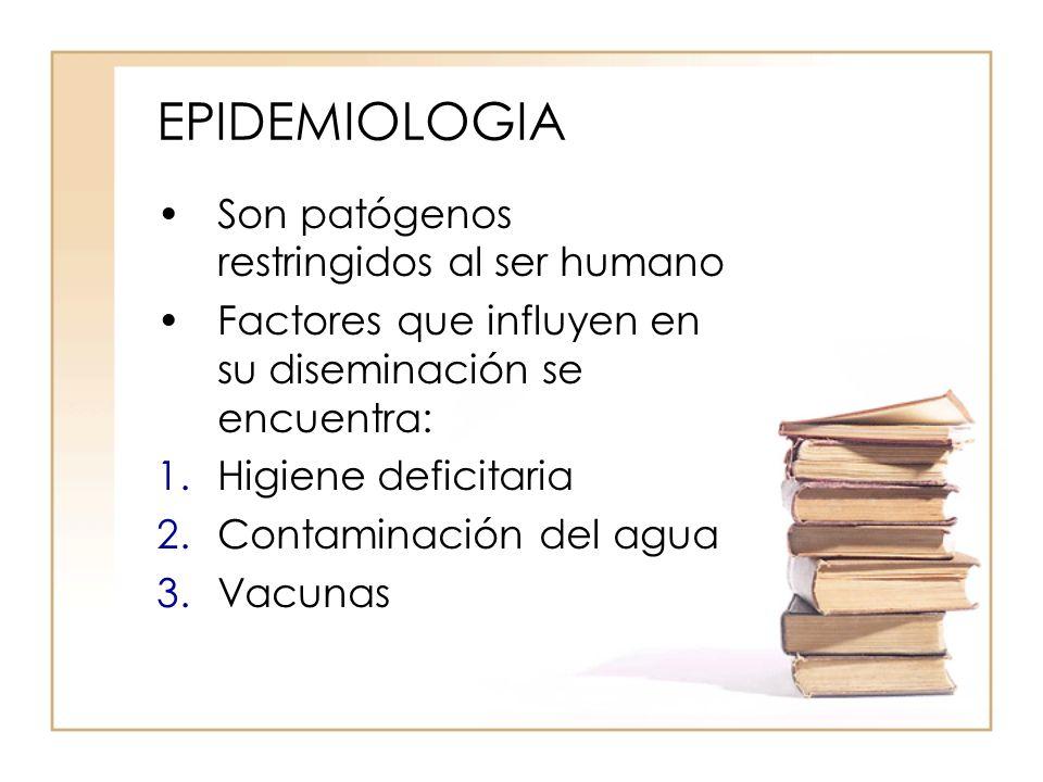 EPIDEMIOLOGIA Son patógenos restringidos al ser humano Factores que influyen en su diseminación se encuentra: 1.Higiene deficitaria 2.Contaminación de