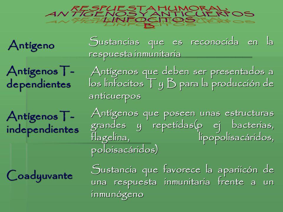 Sustancias que es reconocida en la respuesta inmunitaria Antígeno Antígenos que deben ser presentados a los linfocitos T y B para la producción de ant