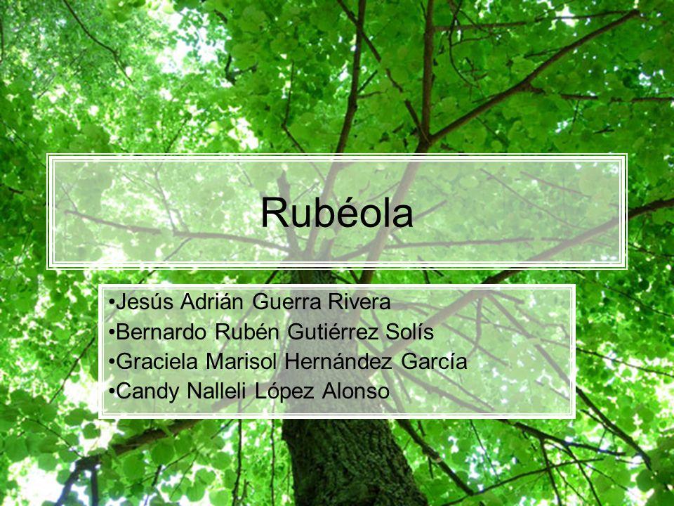 Tratamiento, prevención y control Rubéola El tratamiento para la rubéola se limita a acetaminofén para controlar la fiebre.