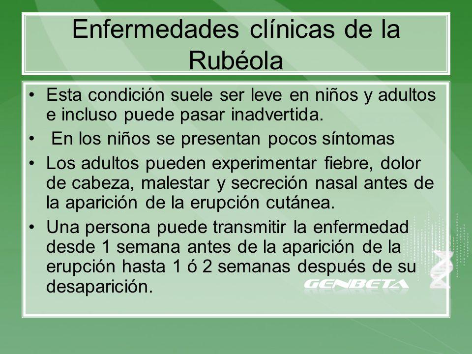 Enfermedades clínicas de la Rubéola Esta condición suele ser leve en niños y adultos e incluso puede pasar inadvertida. En los niños se presentan poco
