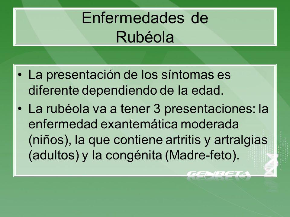 Enfermedades de Rubéola La presentación de los síntomas es diferente dependiendo de la edad. La rubéola va a tener 3 presentaciones: la enfermedad exa