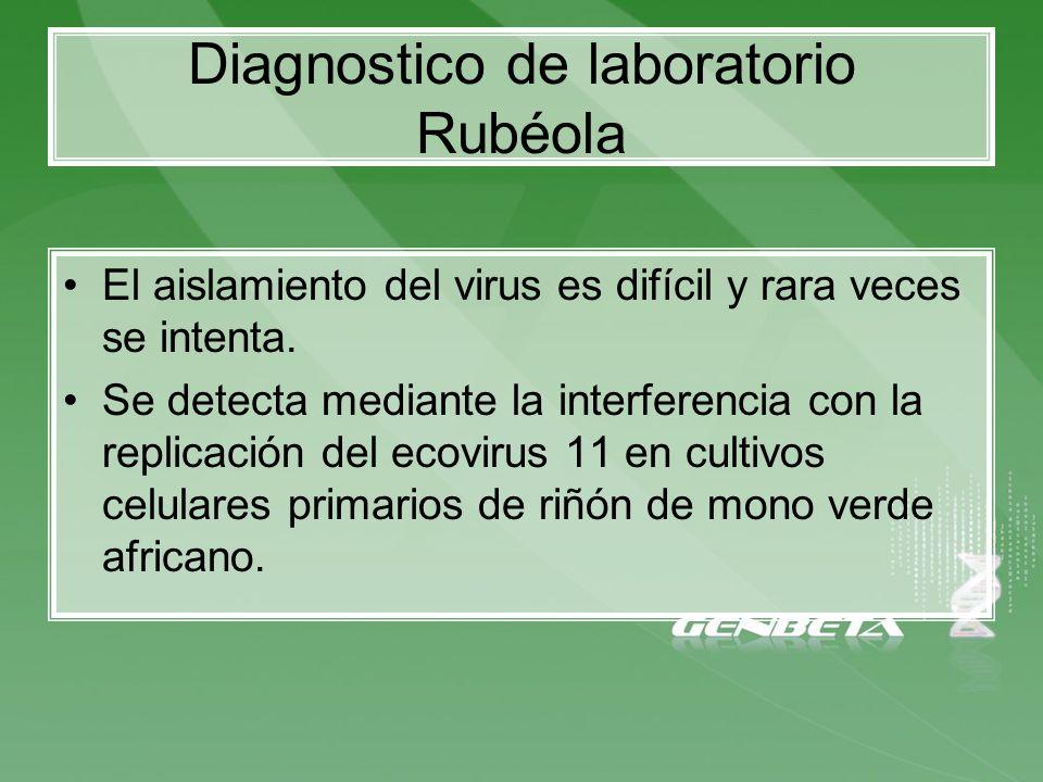 El aislamiento del virus es difícil y rara veces se intenta. Se detecta mediante la interferencia con la replicación del ecovirus 11 en cultivos celul