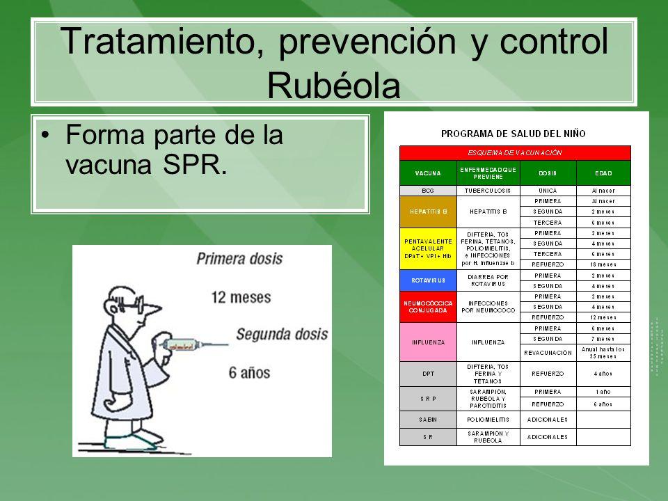 Tratamiento, prevención y control Rubéola Forma parte de la vacuna SPR.