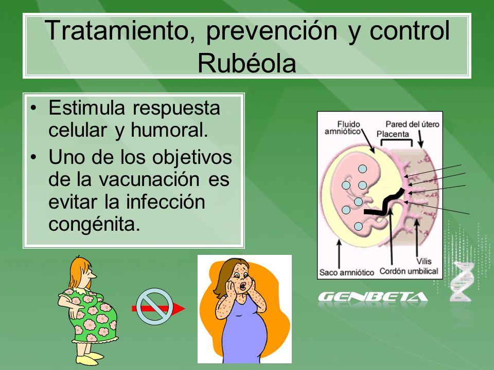 Tratamiento, prevención y control Rubéola Estimula respuesta celular y humoral. Uno de los objetivos de la vacunación es evitar la infección congénita