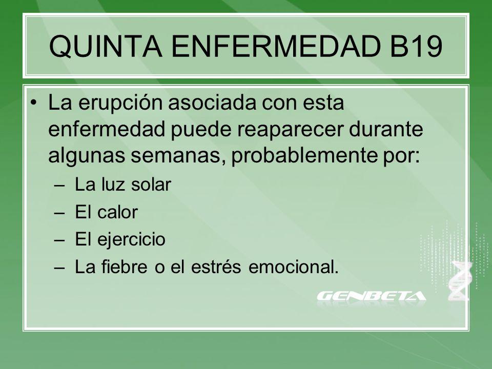 QUINTA ENFERMEDAD B19 La erupción asociada con esta enfermedad puede reaparecer durante algunas semanas, probablemente por: – La luz solar – El calor