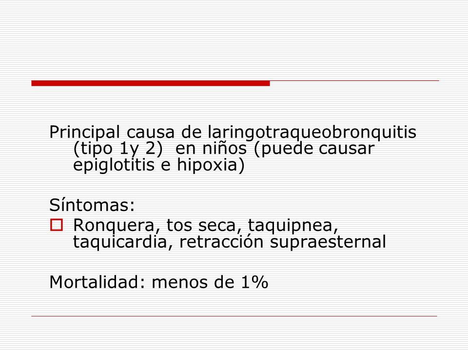Principal causa de laringotraqueobronquitis (tipo 1y 2) en niños (puede causar epiglotitis e hipoxia) Síntomas: Ronquera, tos seca, taquipnea, taquica