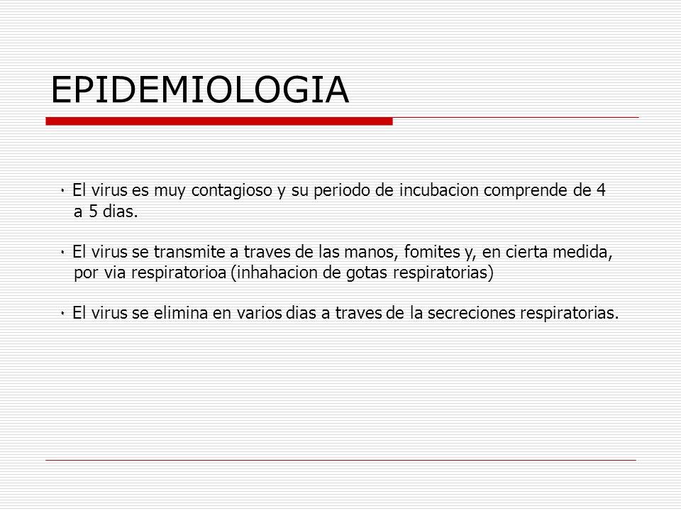 EPIDEMIOLOGIA ٠ El virus es muy contagioso y su periodo de incubacion comprende de 4 a 5 dias. ٠ El virus se transmite a traves de las manos, fomites