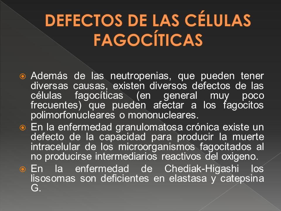 Además de las neutropenias, que pueden tener diversas causas, existen diversos defectos de las células fagocíticas (en general muy poco frecuentes) qu