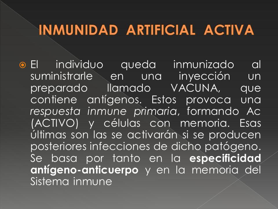 El individuo queda inmunizado al suministrarle en una inyección un preparado llamado VACUNA, que contiene antígenos. Estos provoca una respuesta inmun