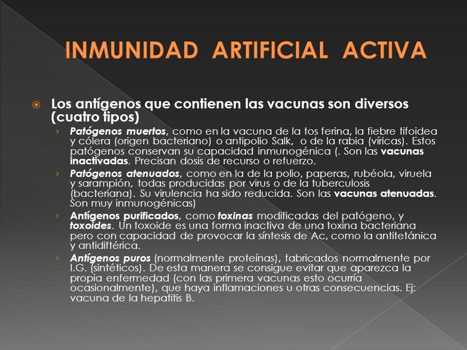 Los antígenos que contienen las vacunas son diversos (cuatro tipos) Patógenos muertos, como en la vacuna de la tos ferina, la fiebre tifoidea y cólera