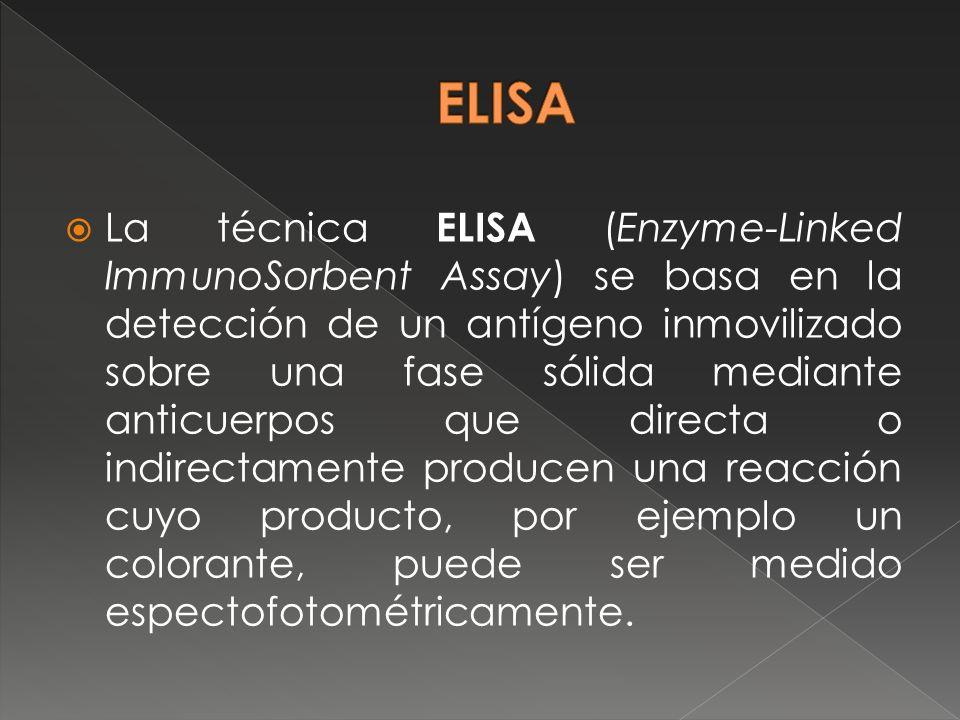 La técnica ELISA (Enzyme-Linked ImmunoSorbent Assay) se basa en la detección de un antígeno inmovilizado sobre una fase sólida mediante anticuerpos qu