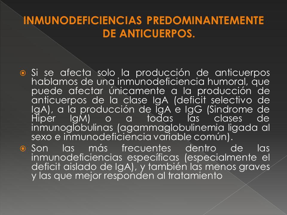 Si se afecta solo la producción de anticuerpos hablamos de una inmunodeficiencia humoral, que puede afectar únicamente a la producción de anticuerpos