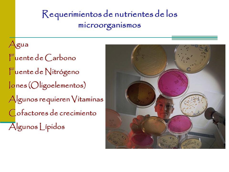 Requerimientos de nutrientes de los microorganismos Agua Fuente de Carbono Fuente de Nitrógeno Iones (Oligoelementos) Algunos requieren Vitaminas Cofa