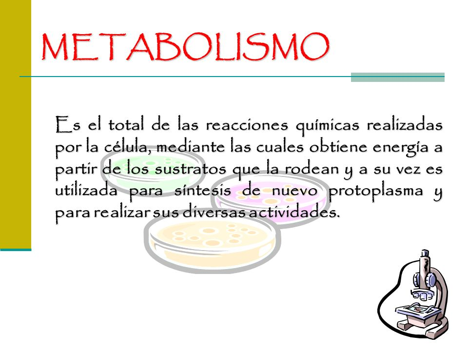 METABOLISMO Es el total de las reacciones químicas realizadas por la célula, mediante las cuales obtiene energía a partir de los sustratos que la rode
