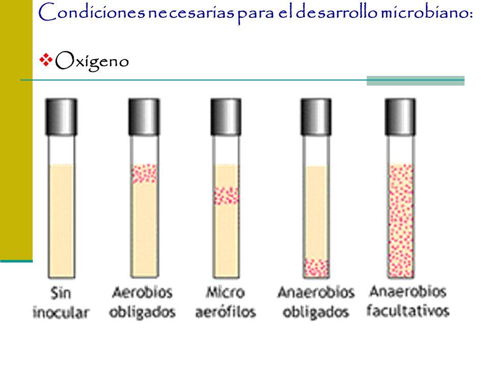 Oxígeno Condiciones necesarias para el desarrollo microbiano: