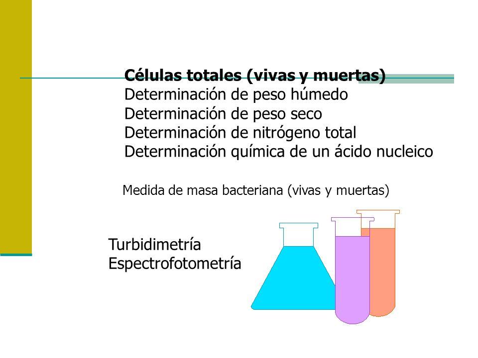 Células totales (vivas y muertas) Determinación de peso húmedo Determinación de peso seco Determinación de nitrógeno total Determinación química de un