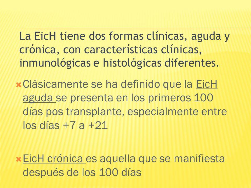 Clásicamente se ha definido que la EicH aguda se presenta en los primeros 100 días pos transplante, especialmente entre los días +7 a +21 EicH crónica