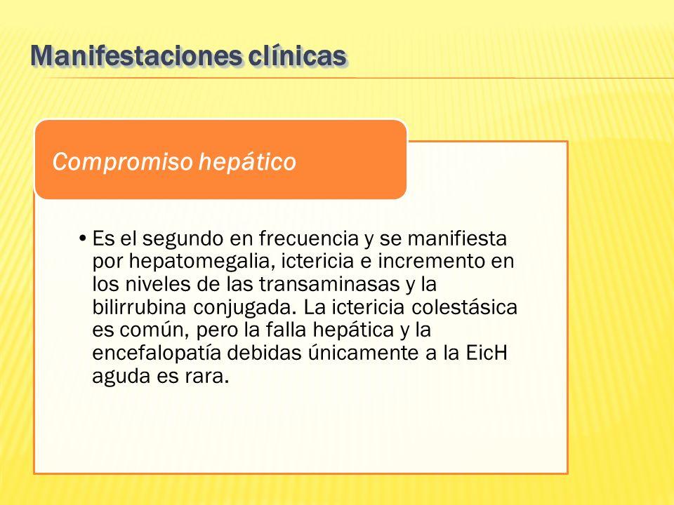 Es el segundo en frecuencia y se manifiesta por hepatomegalia, ictericia e incremento en los niveles de las transaminasas y la bilirrubina conjugada.