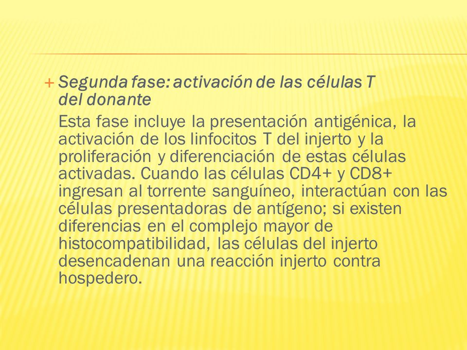 Segunda fase: activación de las células T del donante Esta fase incluye la presentación antigénica, la activación de los linfocitos T del injerto y la