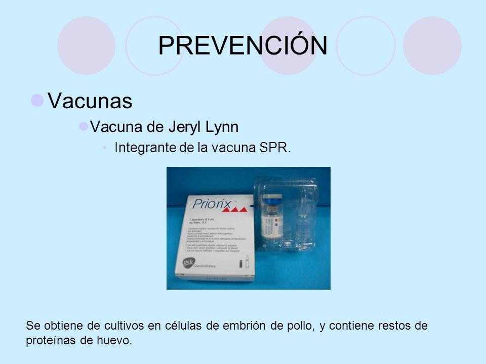 PREVENCIÓN Vacunas Vacuna de Jeryl Lynn Integrante de la vacuna SPR. Se obtiene de cultivos en células de embrión de pollo, y contiene restos de prote