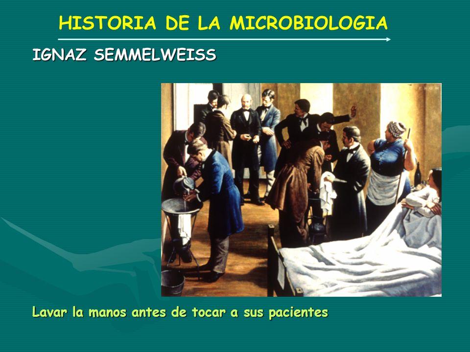 HISTORIA DE LA MICROBIOLOGIA IGNAZ SEMMELWEISS Lavar la manos antes de tocar a sus pacientes