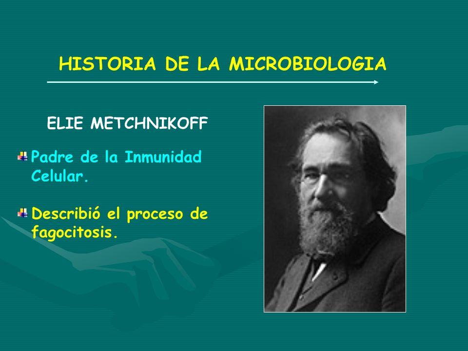 HISTORIA DE LA MICROBIOLOGIA ELIE METCHNIKOFF Padre de la Inmunidad Celular. Describió el proceso de fagocitosis.