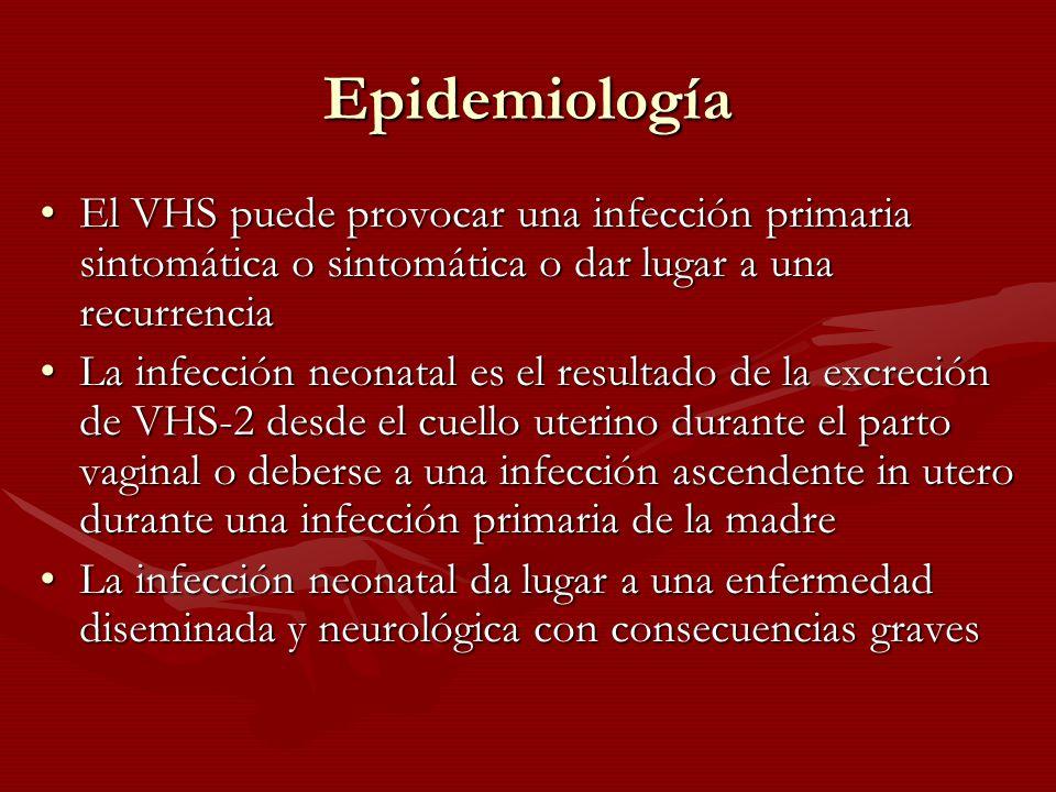 Epidemiología El VHS puede provocar una infección primaria sintomática o sintomática o dar lugar a una recurrenciaEl VHS puede provocar una infección