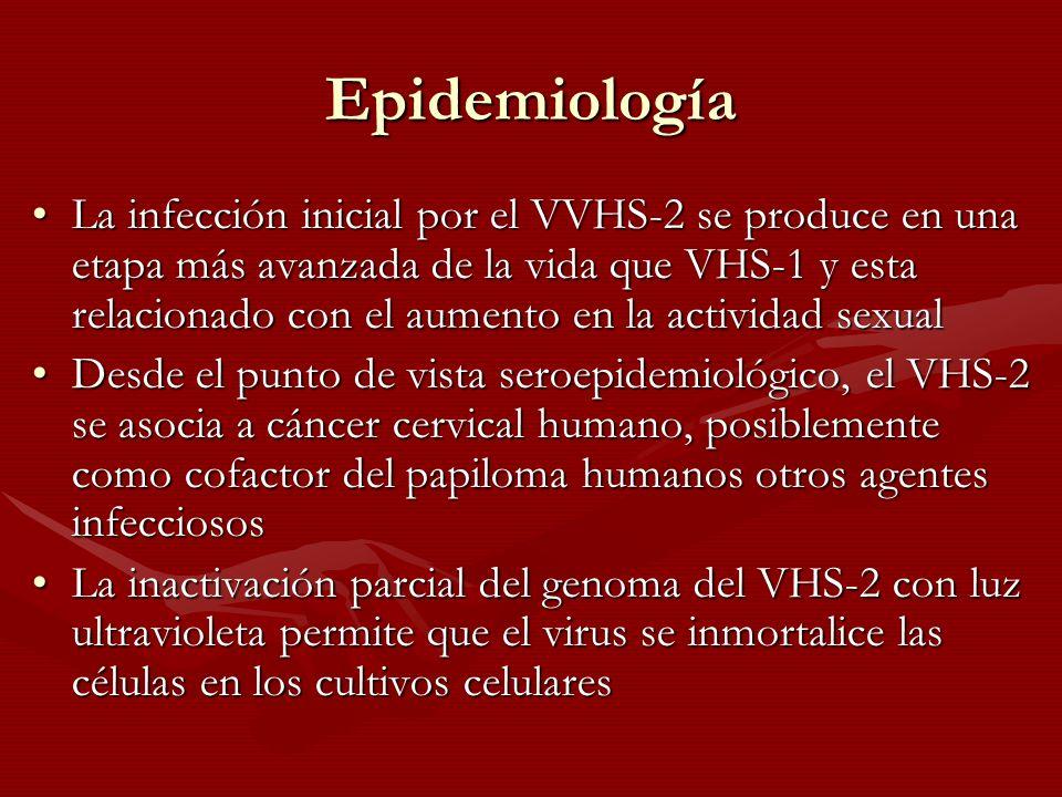 Epidemiología La infección inicial por el VVHS-2 se produce en una etapa más avanzada de la vida que VHS-1 y esta relacionado con el aumento en la act