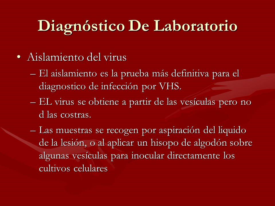 Diagnóstico De Laboratorio Aislamiento del virusAislamiento del virus –El aislamiento es la prueba más definitiva para el diagnostico de infección por