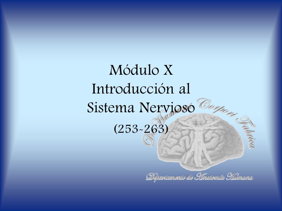 Módulo X Introducción al Sistema Nervioso (253-263)