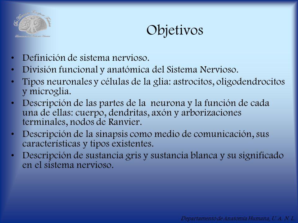 Departamento de Anatomía Humana, U. A. N. L. Objetivos Definición de sistema nervioso. División funcional y anatómica del Sistema Nervioso. Tipos neur