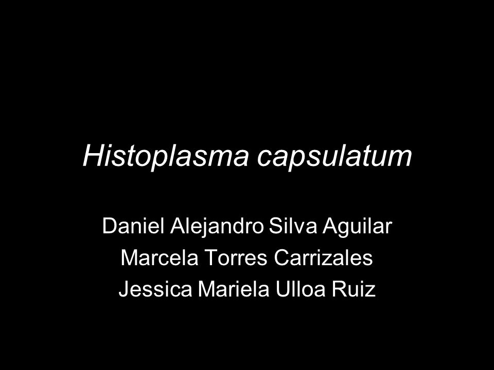 Histoplasma capsulatum Daniel Alejandro Silva Aguilar Marcela Torres Carrizales Jessica Mariela Ulloa Ruiz