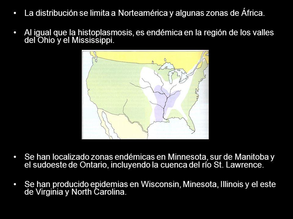 La distribución se limita a Norteamérica y algunas zonas de África. Al igual que la histoplasmosis, es endémica en la región de los valles del Ohio y