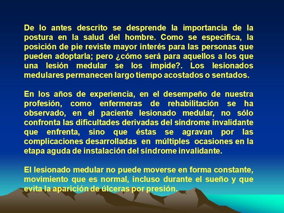 De lo antes descrito se desprende la importancia de la postura en la salud del hombre.